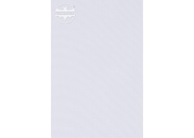 FLAGA 3 -0301701-0000105-00000