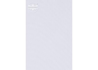 FLAGA 3 -0301701-0000106-DC100