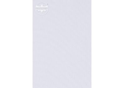 FLAGA 3 -0301701-0000136-DC100